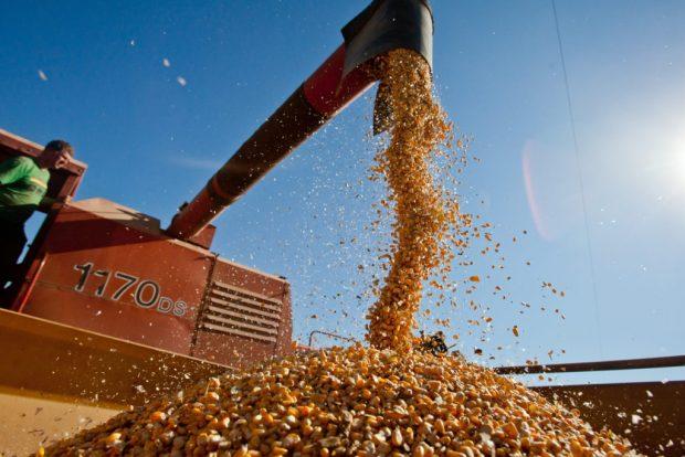 Infraestrutura é maior risco enfrentado pelo setor agropecuário brasileiro, diz Banco Mundial