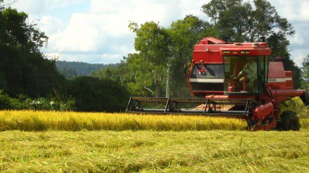 Lei 13.288/16 esclarece contratos de integração no agronegócio