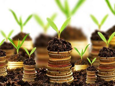 5 áreas quentes para investir em 2017