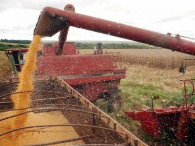 Aumento da produtividade deve elevar em 15,3% colheita de grãos na próxima safra