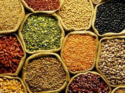 Conab prevê aumento de 19,5% na safra de grãos
