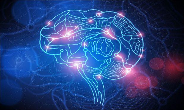 Contribuições da Neurociência na escolha da profissão