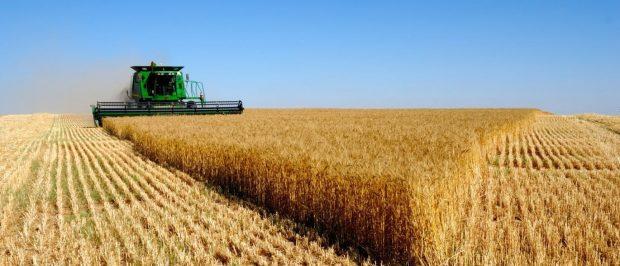 Indústria e expansão do agronegócio criam empregos no interior