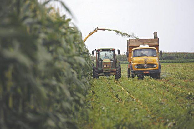 Produtores têm até hoje (29) para aderirem ao Refis rural