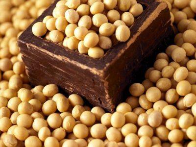 Brasil deve superar EUA na produção de soja pela 1ª vez e assumir liderança global