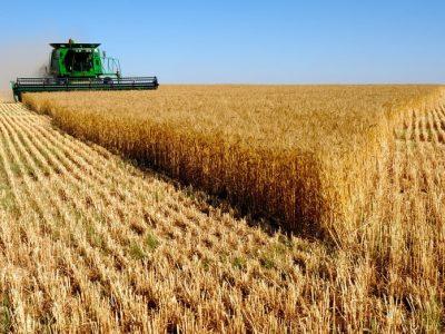 Sensores e Big Data orientam tomada de decisão do produtor rural