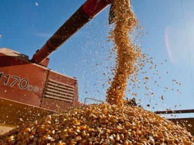 Goiás vai colher 21 mi de toneladas de grãos